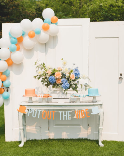 """Dumb and Dumber"" Inspired Cute and Cuter Twin Birthday Party"